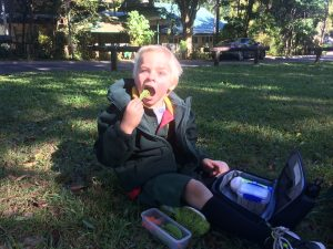 Healthy lunches keep Arlo happy and alert