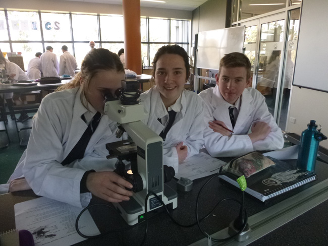 Photo of Regional exchange fuels passion for budding scientists