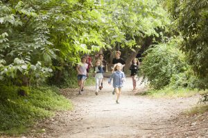 Arlington's rambling garden Preshil school