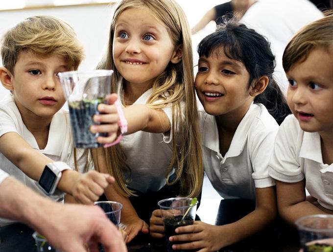 Photo of Exploring sustainable school ideas