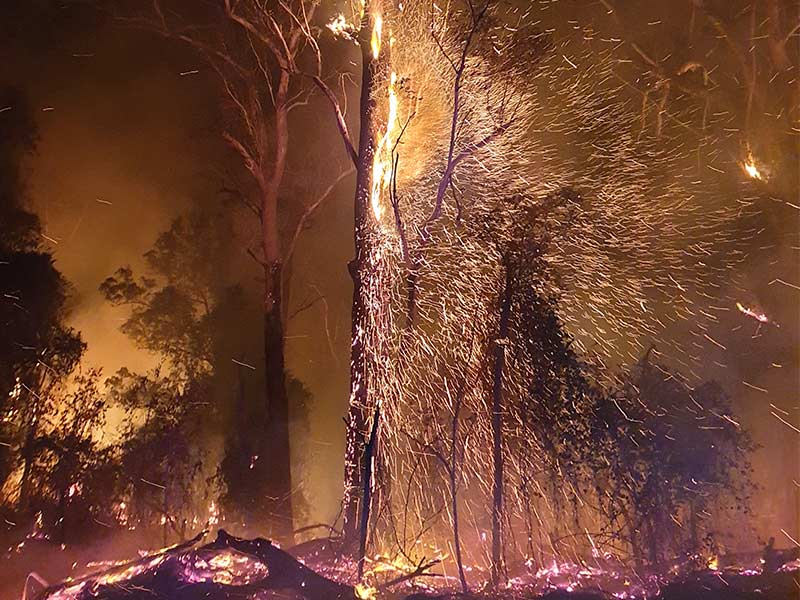 Photo of Public school students and staff are fighting fires in NSW