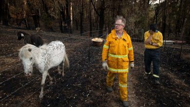 Photo of Two school leaders on facing a summer of bushfires and COVID-19
