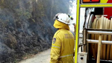 Photo of Schools get ready for bushfire season