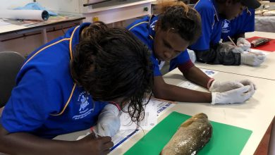 Photo of School of fish: how we involved Indigenous students in our investigation of a 65,000-year-old site