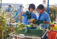 Photo of NSW Growing more green thumbs in schools